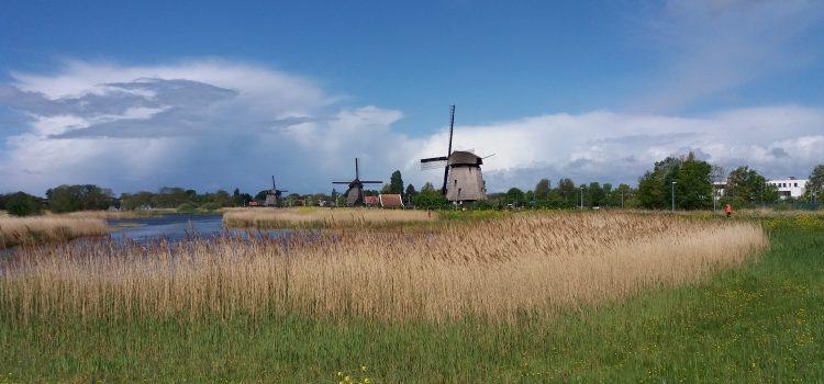 Weidevogels en biodiversiteitvergroting
